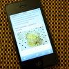 Blog Culinar pe mobil!