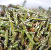 Salata picanta de fasole verde pastai- reteta chinezesca de post