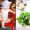 4 tipuri de alimente importante in alimentatia copilului meu