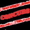 Mos Craciun si-a umplut sacul. Vezi castigatorii concursului Veggie.ro!